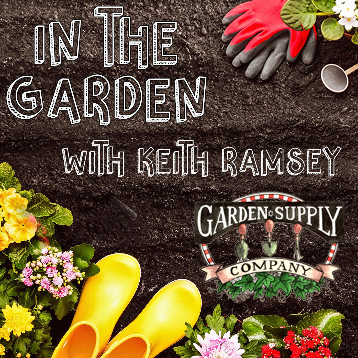 In The Garden